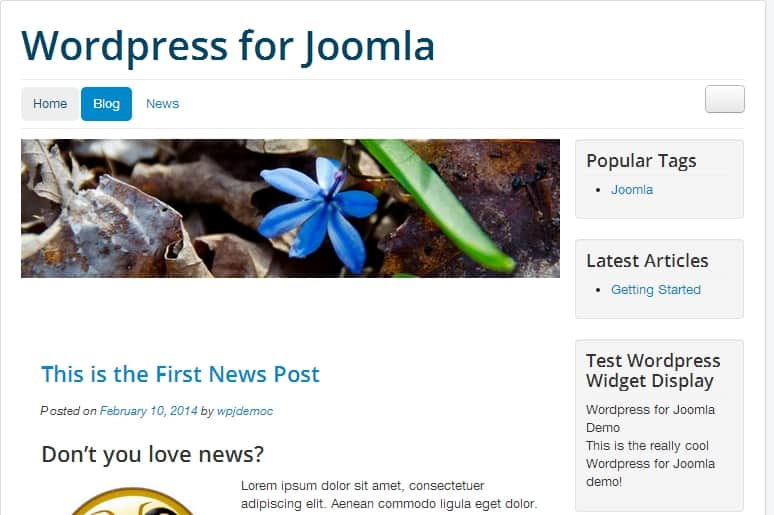 wordpress in joomla site